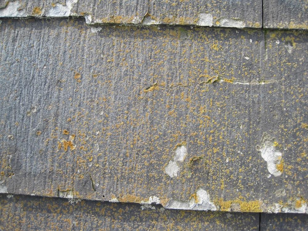 栃木 外壁塗装 屋根塗装