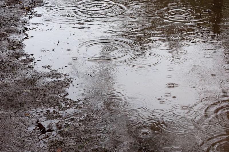 雨漏りは梅雨明けまで待ってくれない!梅雨時でも塗装はできます。(いまだけ10%OFF)